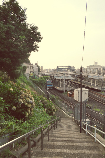 Nippori Station view from Suwa Shrine