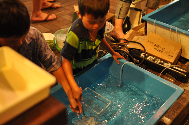 Goldfish Scooping at Azabu-Juban summer night festival