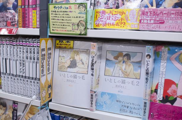 Yai manga