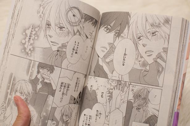"Yaoi manga ""RUSH!"""